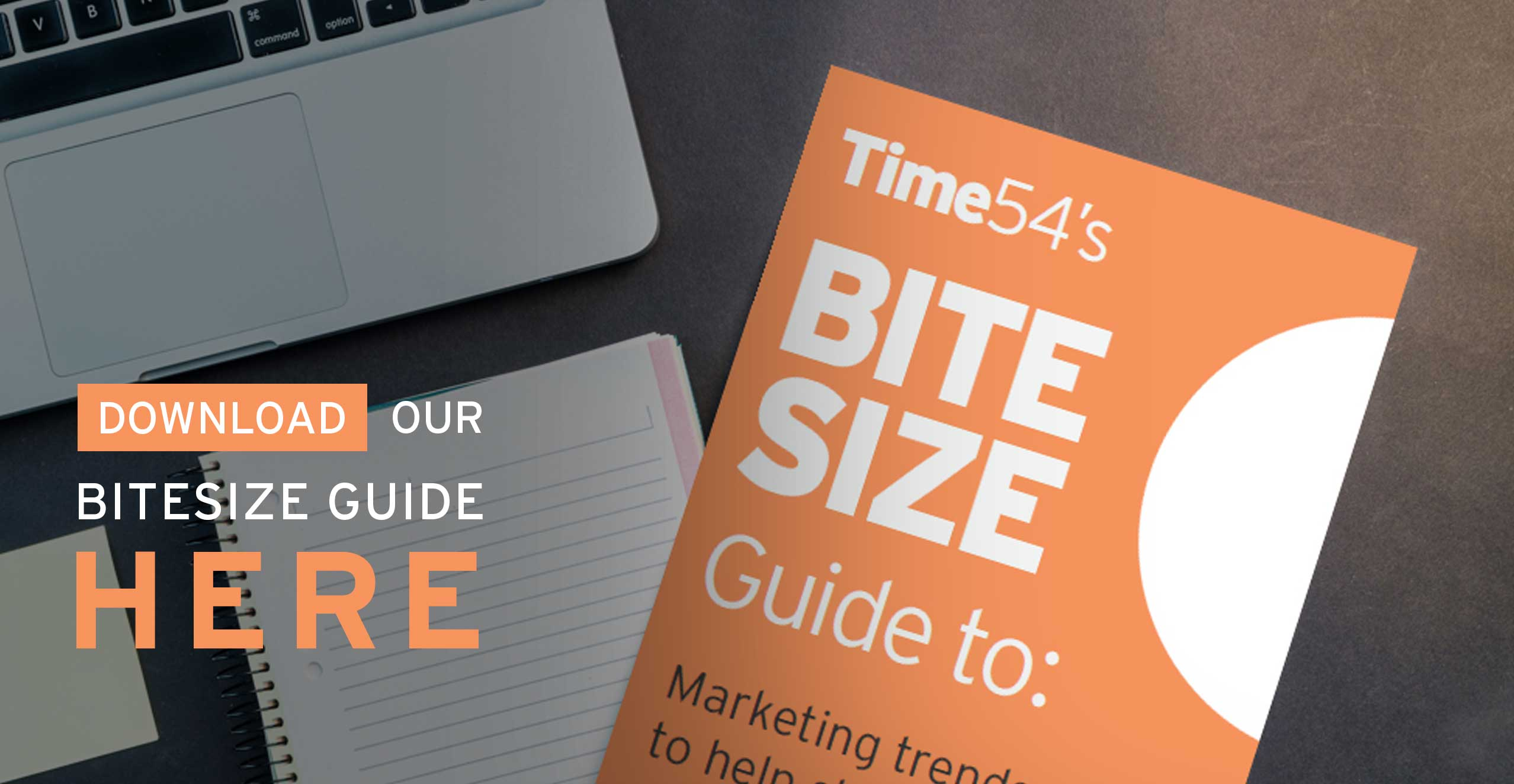 Download our bitesize guide here